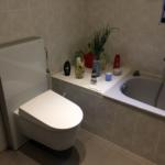 Geberit-Dusch-WC mit Monolith - Vorwandelement